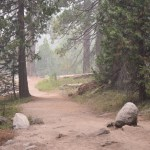 Trail on a smoky morning12