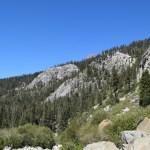 hillside-near-tokopah-falls12