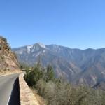 scenic-view-in-sequoia12