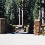 wooden-bridge-in-sequoia12