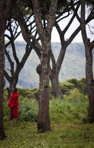 Massai in the woods in northern Tanzania