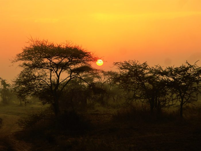 Sunsets of Africa