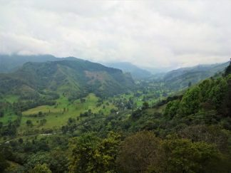 View of Cocora Valley