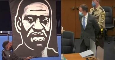 George Floyd killing case