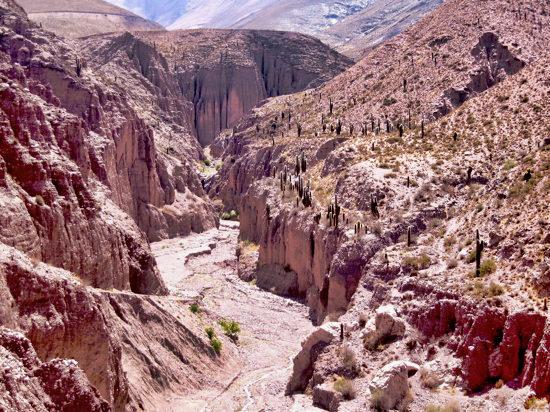 Canyon2Purmamarca