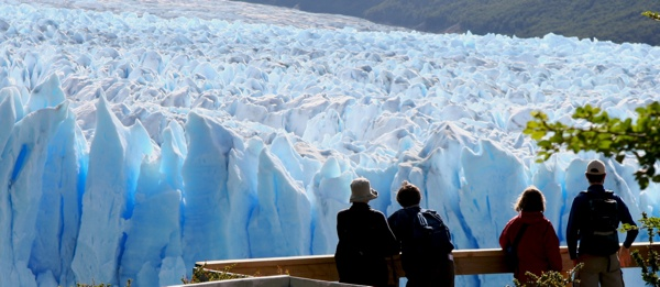 Glaciar Watching