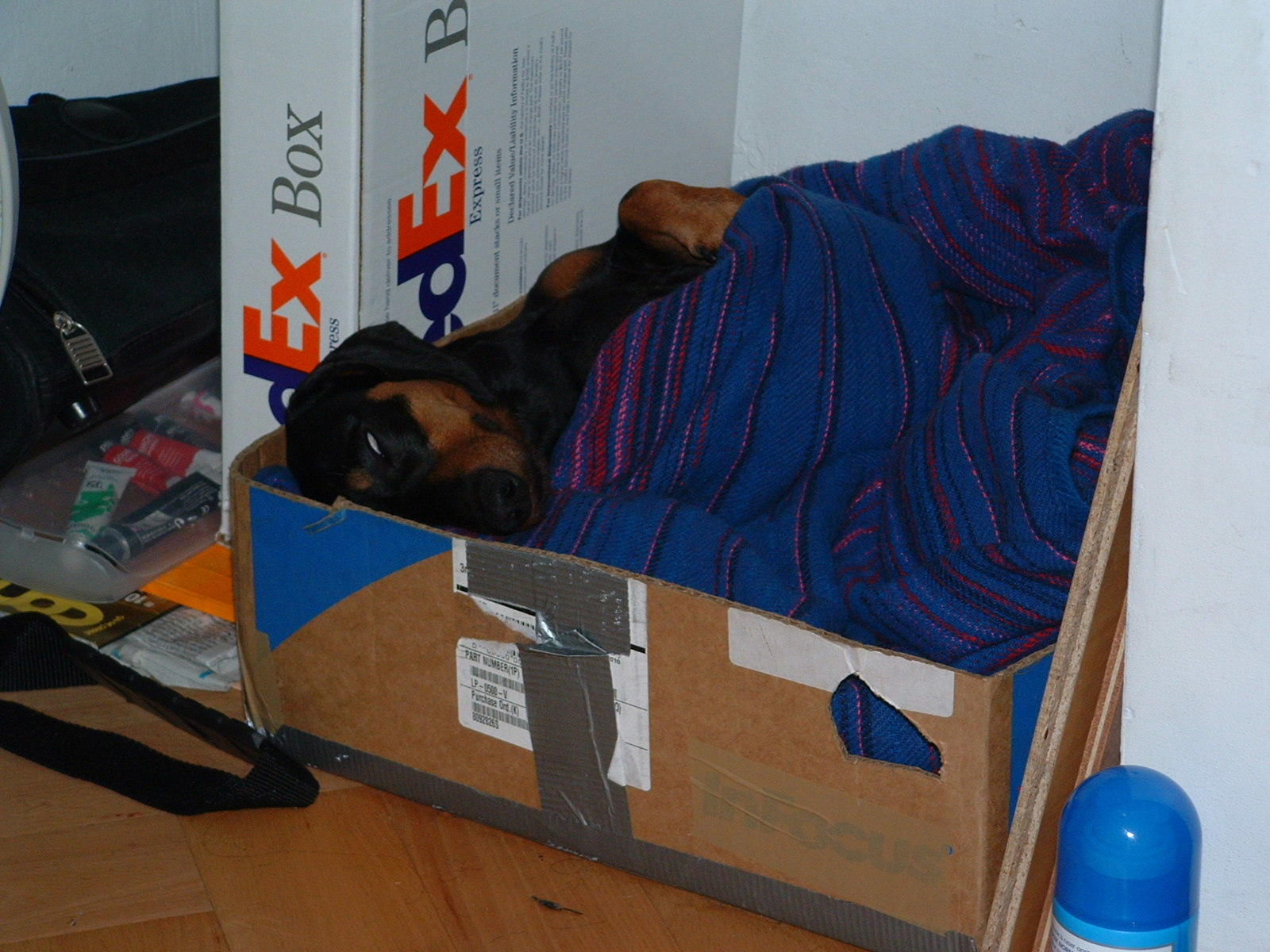 Cardboard Box & British Airways Blanket