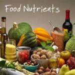 punjab-food-authority-internship