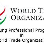 Programa de organización del comercio mundial con jóvenes profesionales