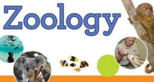 online-zoology-degree-programs