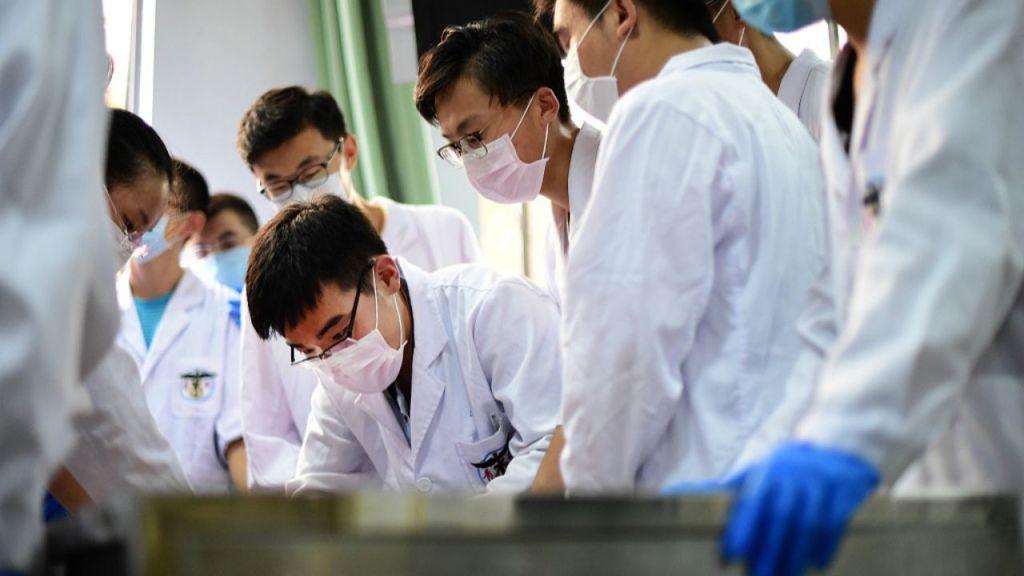 ¿Cuáles son las alternativas a la escuela de medicina en 2020?