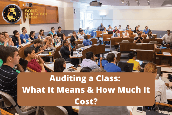 What-is-Auditing-a-Class