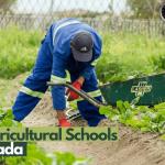 escuelas de agricultura en canadá