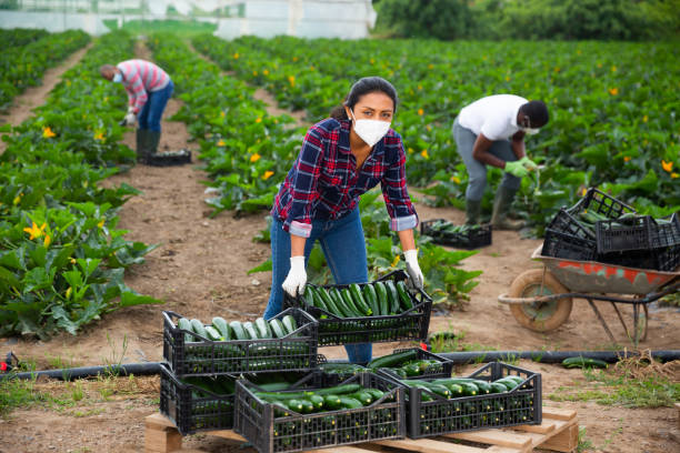 13 Best Agriculture Schools in Canada   2021 Rankings