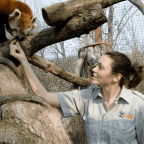Zoologist Or Wildlife Biologist- Which One Is Better?