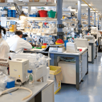 The Insight Of Medical Research Career Path