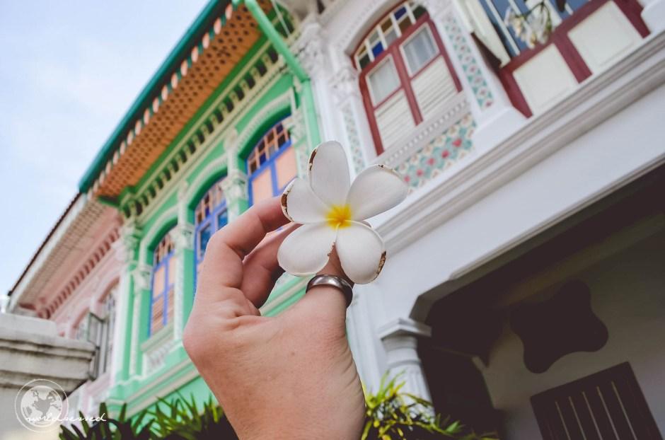 Singapur Tag 3-23