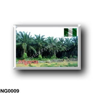 NG0009 Africa - Nigeria - Palm Trees