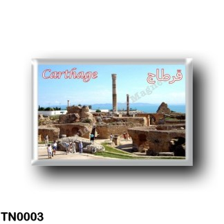 TN0003 Africa - Tunisia - Carthage