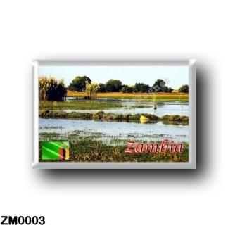 ZM0003 Africa - Zambia - Bangweulu Swamps