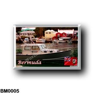 BM0005 America - Bermuda - Flatts Village