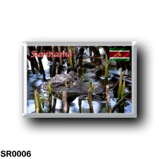 SR0006 America - Suriname - Bigi-Pan kaaiman