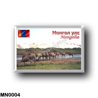 MN0004 Asia - Mongolia - Khongoryn Els Camels