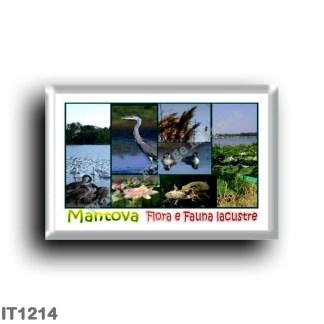 IT1214 Europe - Italy - Lombardy - Mantua - Lake Flora and Fauna