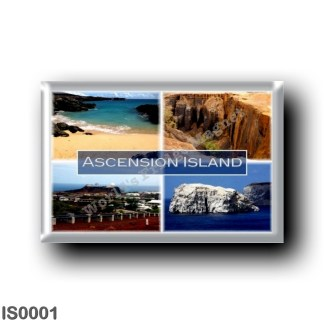 IS0001 Europe - Iceland - Ascension Island - Volcan - Comfortless Cove - Cat Hill - Boatswain Bird