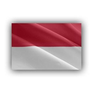 Monaco - flag