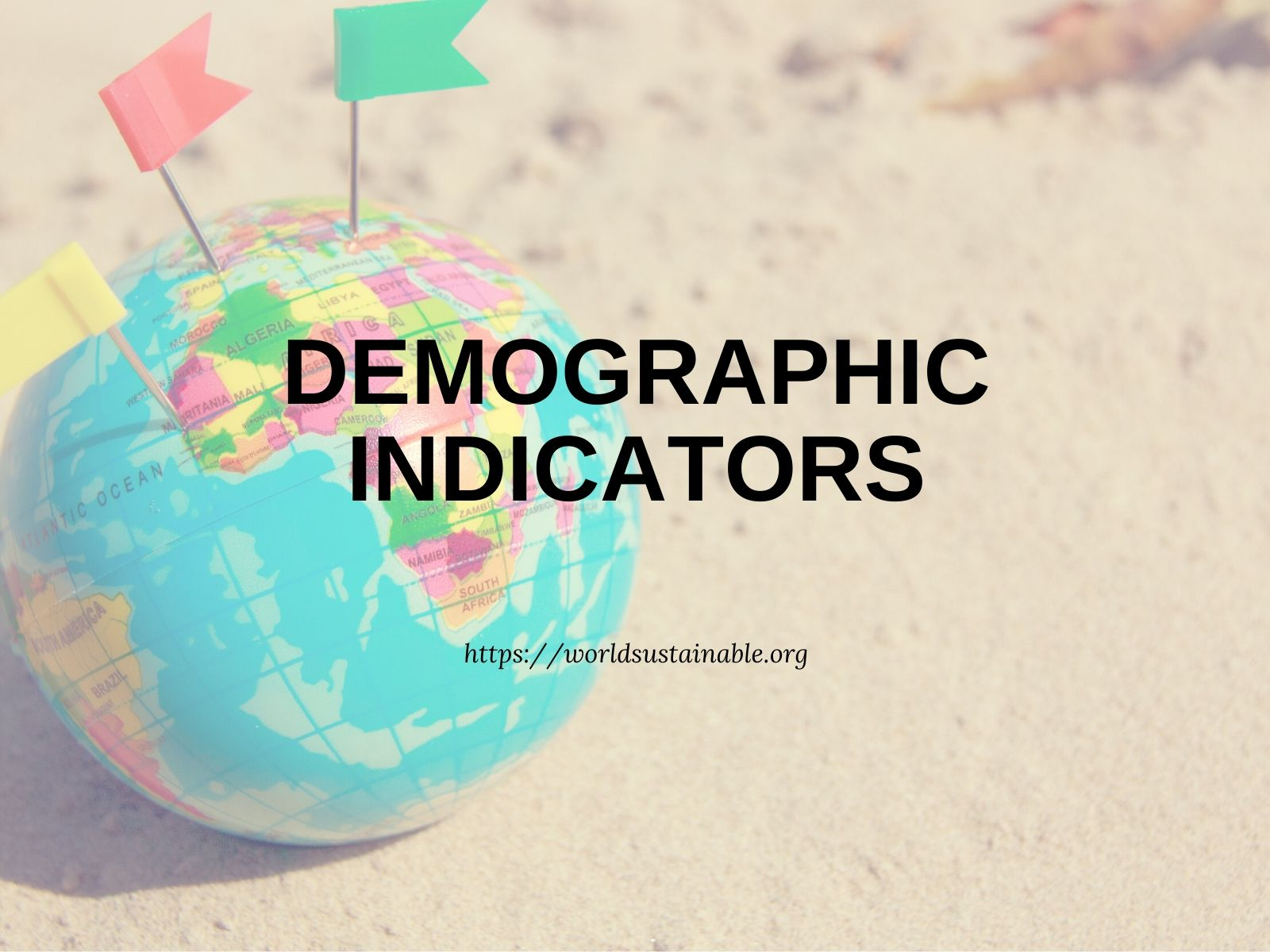 top-demographic-indicators