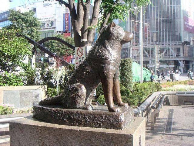 patung anjing hachiko gbr