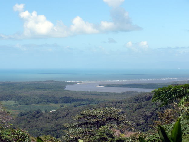 View from the top of the Daintree Rainforest in Australia