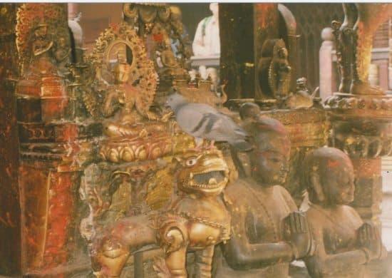 rat temple nepal (550x390)