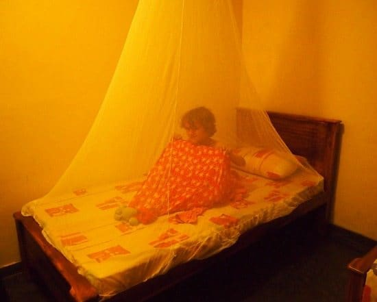 Travel essentials Mosquito net