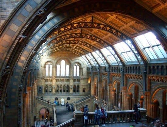 Natural History Museum Interior