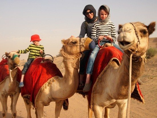 Camel riding in the desert. Dubai. Family fun on a camel safari.