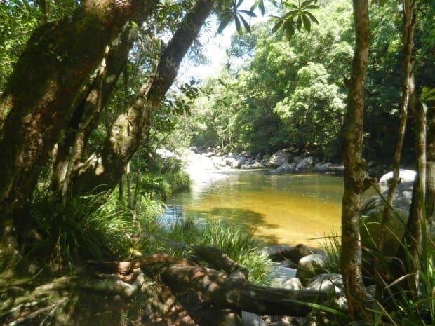 Mossman Gorge Fresh Water Swimming Hole Near Port Douglas