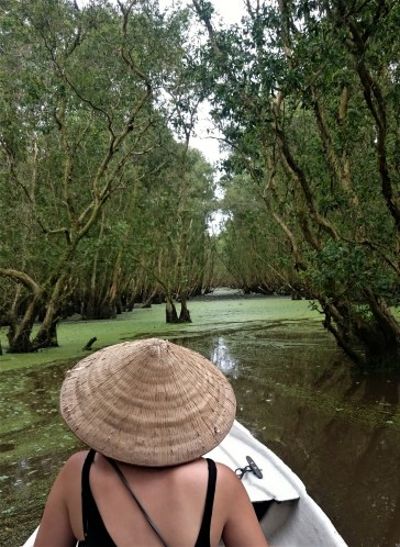 Floating through mangrove trees - what a scenery!