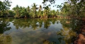Bang Krachao Park