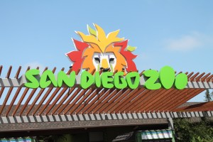 San Diego Zoo Sign with green writing and an orange, red and yellow lion coming out of the top