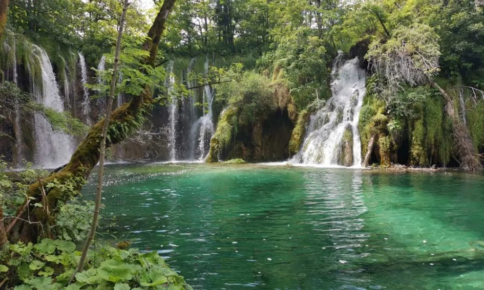 Best Zadar day-trips and Excursions - Shows Plitvice Lakes