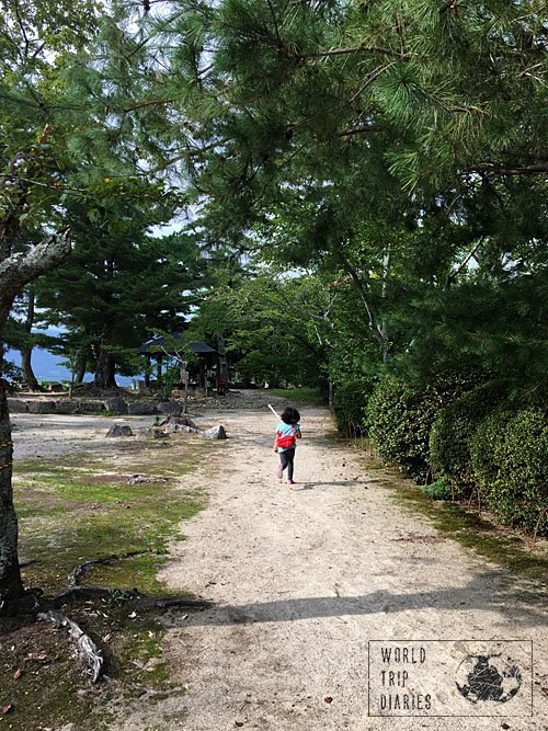 iga-ueno castle gardens