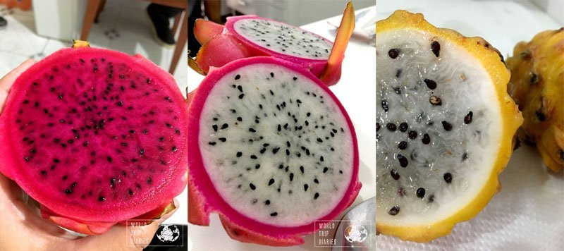 dragon fruit brazil