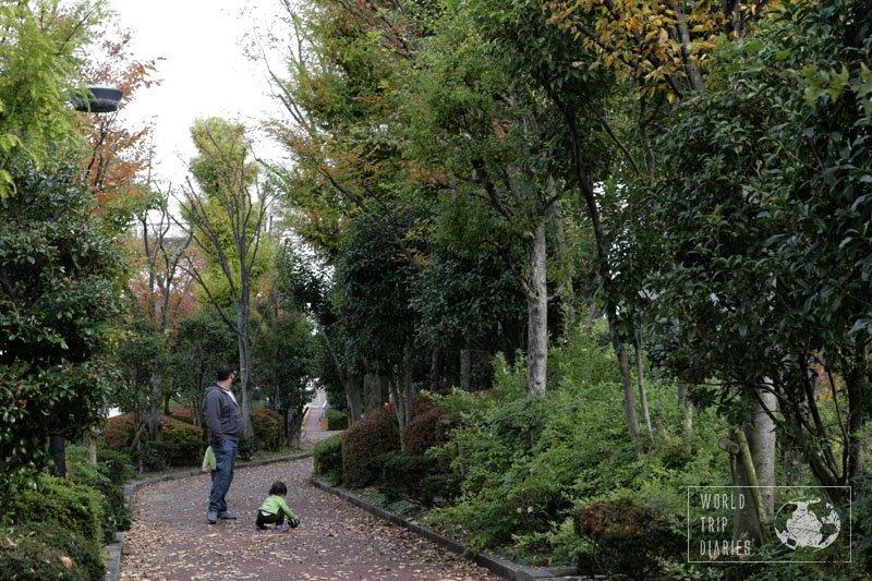 walkway in suzuka, japan