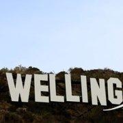 Wellington Feature