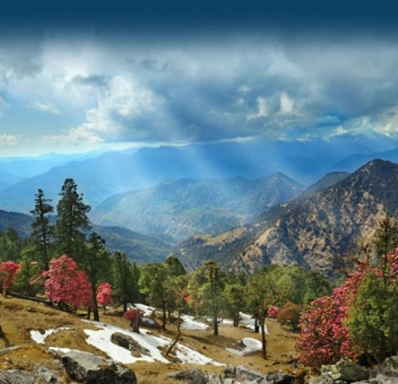 Kanatal Less traveled hill station in India
