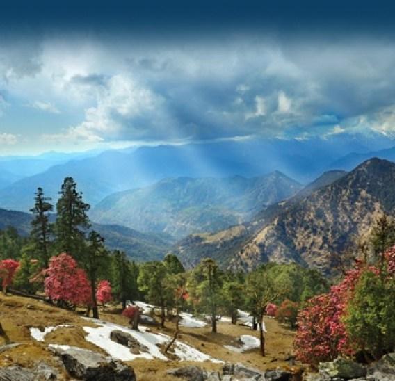 Kanatal Less traveled hill station in India