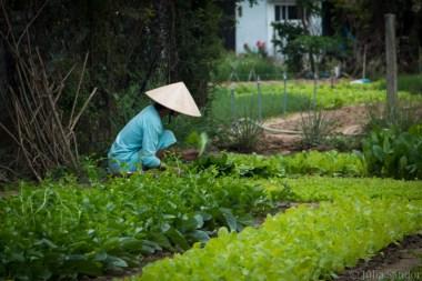Vietnam_HoiAn_2016_WorldViber_001 (48)