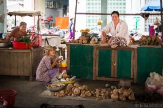Vietnam_South_Mekong_2016_WorldViber_22